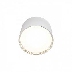 Потолочный светильник Медина 05410,01