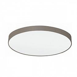 Настенно-потолочный светильник Pasteri 97621