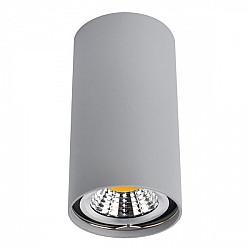 Точечный светильник Unix A1516PL-1GY