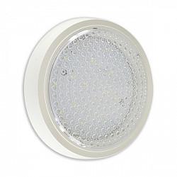Настенно-потолочный светильник Сигма 08581
