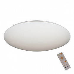 Потолочный светильник Berkeley OML-43007-80