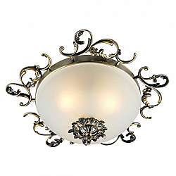 Потолочный светильник Palermo OML-76407-03