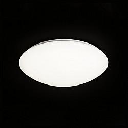 Потолочный светильник Zero 5411