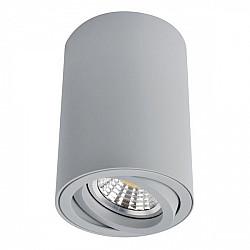Точечный светильник Sentry A1560PL-1GY