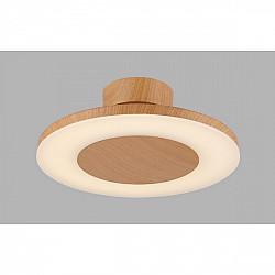 Потолочный светильник Discobolo 4495