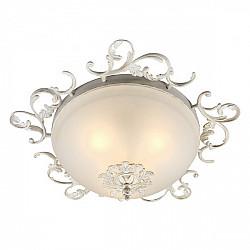 Потолочный светильник Palermo OML-76417-03