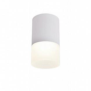 Точечный светильник 100 OML-100009-05