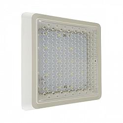 Настенно-потолочный светильник Сигма 08583