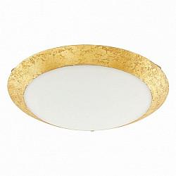 Настенно-потолочный светильник Montenovo 98023