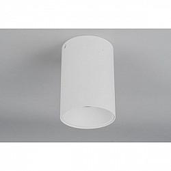 Точечный светильник 101 OML-101209-01
