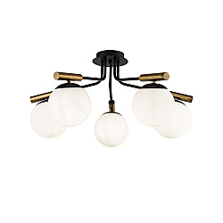 FR5011CL-05B Потолочный светильник Modern Paolina Freya