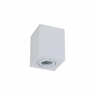 Потолочный светильник C017CL-01W Alfa Maytoni