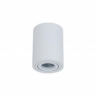 Потолочный светильник C016CL-01W Alfa Maytoni