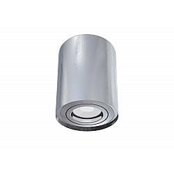 Потолочный светильник C016CL-01S Alfa Maytoni