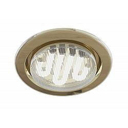 Встраиваемый светильник DL293-01-G Metal Modern Maytoni