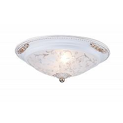Потолочный светильник C907-CL-02-W Diametrik Maytoni