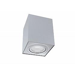 Потолочный светильник C017CL-01S Alfa Maytoni