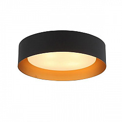 Потолочный светильник Chio SL392.422.04