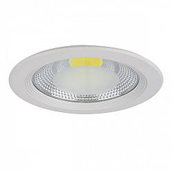 Точечный светильник Forto 223202