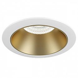 Точечный светильник Share DL051-1WMG
