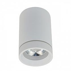 Точечный светильник Edda APL.0053.09.10