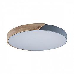 Потолочный светильник Axel 10004/36 Grey