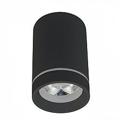 Точечный светильник Edda APL.0053.19.10