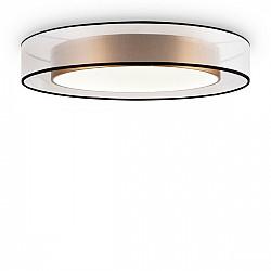Потолочный светильник Zoticus FR6005CL-L48G