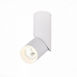 Точечный светильник Tortelle ST107.542.10