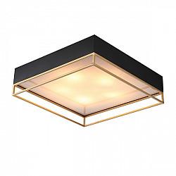 Потолочный светильник Chodo SL1127.422.05