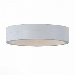 Настенный светильник уличный Molto SL562.501.01
