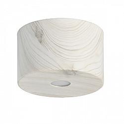 Потолочный светильник Иланг 712010701