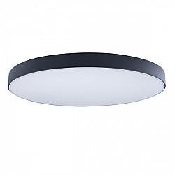Потолочный светильник Axel 10002/48 Black