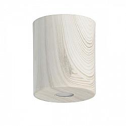 Потолочный светильник Иланг 712010801