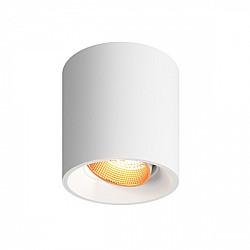 Точечный светильник DK3090-WBR