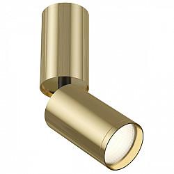 Точечный светильник FOCUS S C051CL-01G