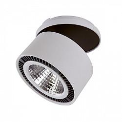 Точечный светильник Forte inca 214820