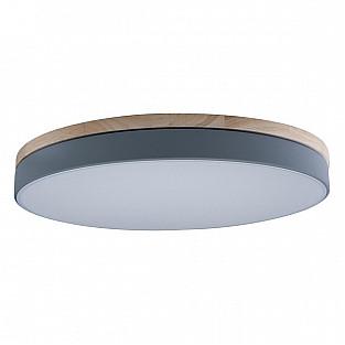 Потолочный светильник Axel 10001/36 Grey