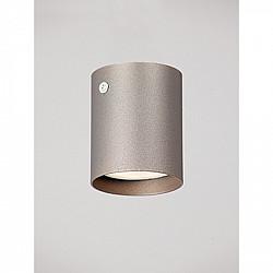Точечный светильник V4639-2/1PL