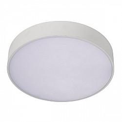 Потолочный светильник Evon APL.0113.09.18