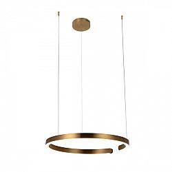 Подвесной светильник Ring 10013L