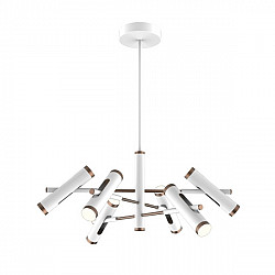 Подвесная люстра 2325-12P Modern LED Duplex Favourite