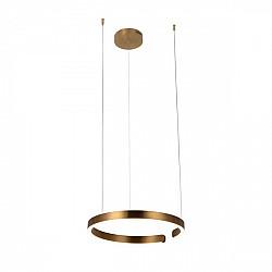 Подвесной светильник Ring 10013M