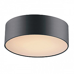 Потолочный светильник 1514-2C Modern Cerchi Favourite