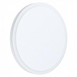 Настенно-потолочный светильник Mongodio 1 98656