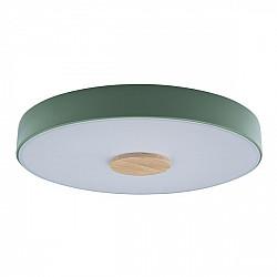 Потолочный светильник Axel 10003/24 Green