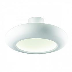 Потолочный светильник Kreise 1526-12U