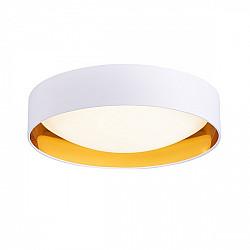 Потолочный светильник Orbio SLE201122-01