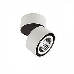 Точечный светильник FORTE MURO 213830