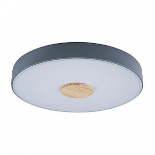 Потолочный светильник Axel 10003/24 Grey